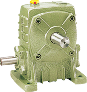 WP series reducer